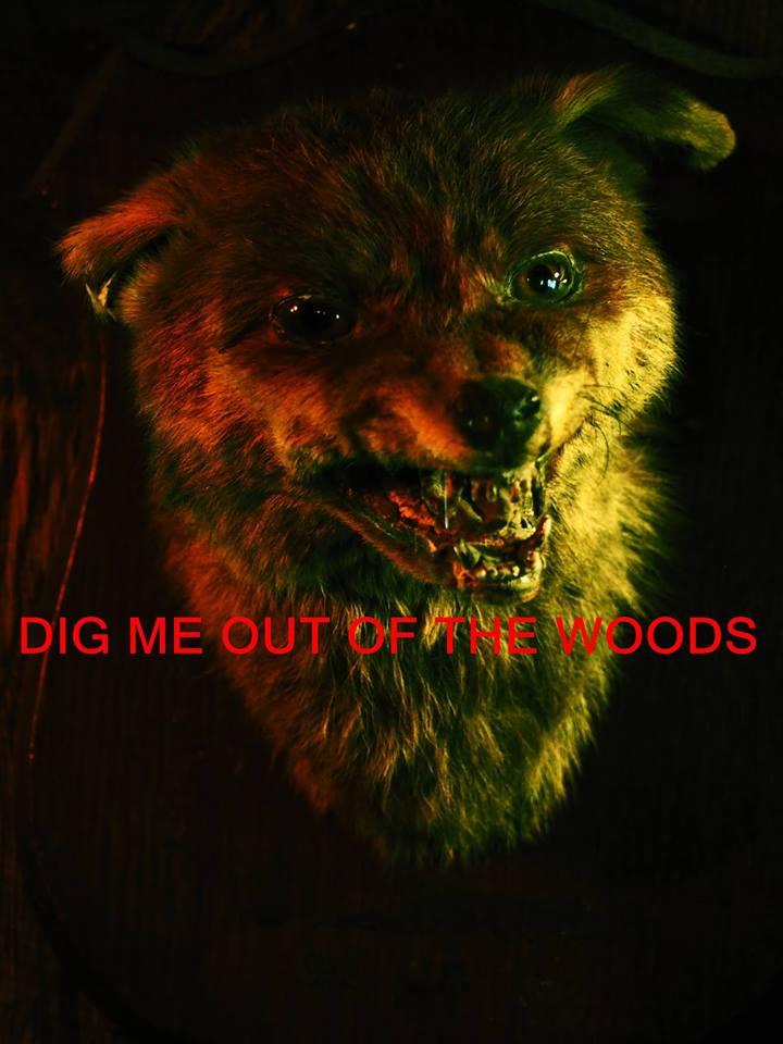 digmeoutofthewoods
